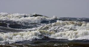 шторм Стоковые Изображения