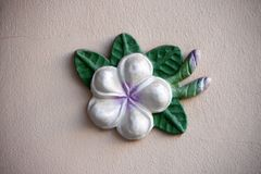 Штукатурка цветка Plumeria на светлооранжевой предпосылке Отлитый в форму li Стоковые Фотографии RF