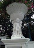 Штукатурка ягнится римский стиль, под цветочным горшком бугинвилии стоковые изображения