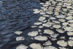 Шуги на воде Стоковое Изображение RF