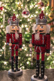 Шутиха и рождественская елка гайки Стоковое Фото