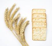 Шутихи сыра или печенья и уши пшеницы на белизне Стоковые Фото
