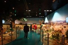 Шэньчжэнь, Китай: выставки образца дикого животного Стоковое Изображение RF