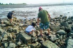 Шэньчжэнь, Китай: люди ищут малые крабы на пляже Стоковое Изображение