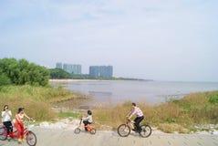 Шэньчжэнь, фарфор: посетители парка залива Шэньчжэня для того чтобы ехать велосипед Стоковое Фото