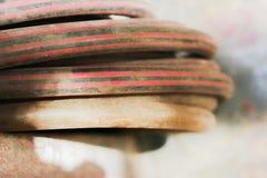 шланги Стоковая Фотография RF