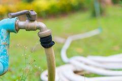 Шланг сада или белая резиновая трубка с faucet на поле травы Стоковые Фотографии RF