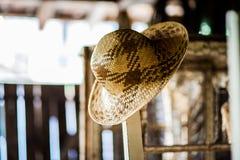 Шлем сторновки Стоковые Изображения