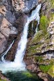 Шлепок Savica водопада, jezero Bohinjsko, Словения Стоковые Фото