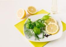 Шлихта базилика укропа лимона Стоковое фото RF
