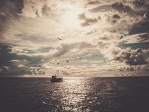 Шлюпка в море стоковое изображение rf