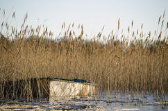 Шлюпка в озере Стоковое Изображение RF