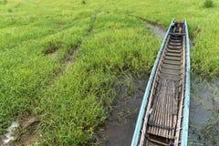 Шлюпка длинного хвоста среди зеленых водорослей Стоковые Фото