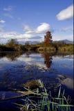 Шлюпка падает вниз озеро осени Стоковые Фото