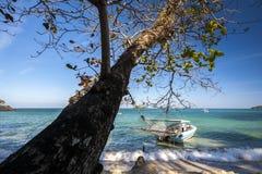Шлюпка связанная вверх с деревом Пляж океана стоковые фото