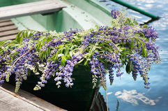 Шлюпка с lupine украшения цветков, внешним Лето, Россия Стоковое Фото