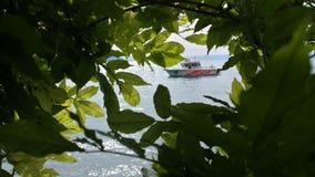 Шлюпка через листья Стоковые Изображения RF