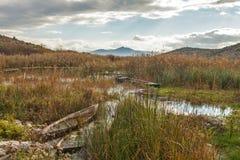 Шлюпки в озере Стоковые Изображения RF
