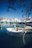 Шлюпки и яхты причаленные в Марине Стоковое Фото