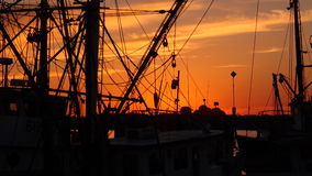 Шлюпки креветки на заходе солнца Стоковое Изображение RF