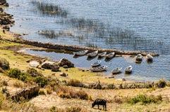Шлюпки на береге на Isla del Sol на озере Titicaca в Boliv Стоковое Фото