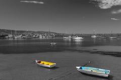 Шлюпки цвета с черно-белой предпосылкой Стоковые Фотографии RF