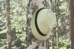 Шляпа на хоботе дерева Стоковое Изображение RF