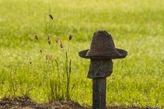 Шляпа Стоковые Изображения RF