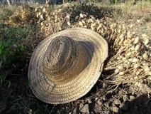 Шляпа Wite Стоковое Фото