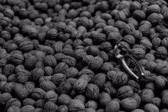 Щелкунчик на гайках Стоковое Фото