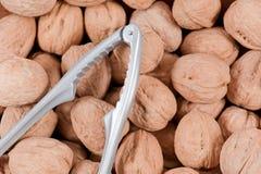 Щелкунчик обстреливал грецкие орехи Стоковая Фотография RF