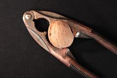 Щелкунчик Стоковое Изображение