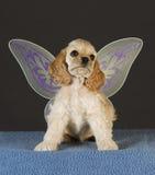 щенок ангела Стоковая Фотография RF