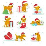 Щенок вектора любимчика собаки рождества животный в шляпе santa на Xmas или счастливом торжестве праздника Нового Года с подарком Стоковая Фотография RF