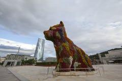 Щенок ` Джеф Koons в Бильбао стоковая фотография rf