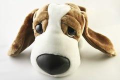щенок Стоковое Изображение