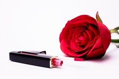 Щетка губной помады использует губы для женщин Стоковое фото RF