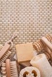 Щетка ногтя люфы мыла бара Massager на лозе Стоковые Изображения RF
