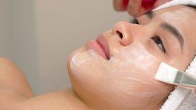 Щетка польз специалисту по красоты для того чтобы приложить косметическую маску на стороне ` s девушки стоковые фотографии rf