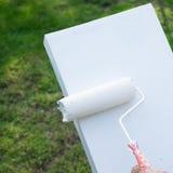 Щетка ролика краски покрашена белый на поле цемента Стоковое Фото
