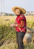 Щелчковый портрет счастливой старшей женщины стоковое фото