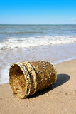 Щипцы гусыни прикрепились к пластичному ведру на пляже с голубым небом Стоковое фото RF