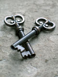 ые ключи Стоковые Изображения RF