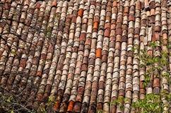 ые черепицей крыши города старые красные Стоковое Фото