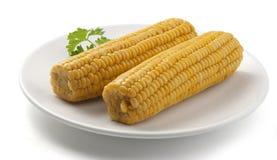 Ые corncobs Стоковое Изображение