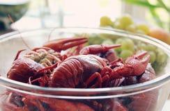 Ые Crawfish Стоковая Фотография