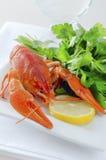 ые crayfish Стоковые Изображения