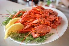 ые crayfish Стоковое Фото