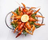 ые crayfish Стоковое Изображение