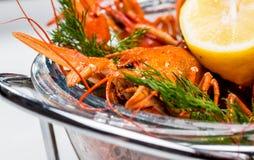 ые crayfish Стоковое фото RF